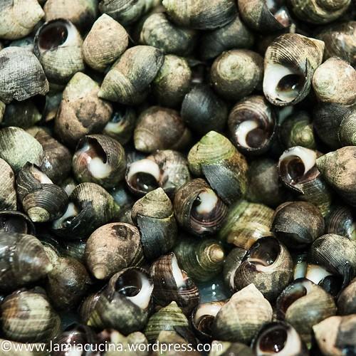Meeresfrüchtekurs 2014 10 11_6018