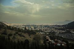Palermo City
