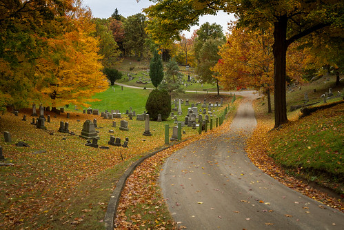 road autumn trees orange ny newyork fall nature beautiful graveyard leaves weather landscape outside outdoors colorful cloudy tombstone scenic overcast historic hills foliage curve nys rochesterny westernnewyork wny monroecounty mounthopecemetery dandangler