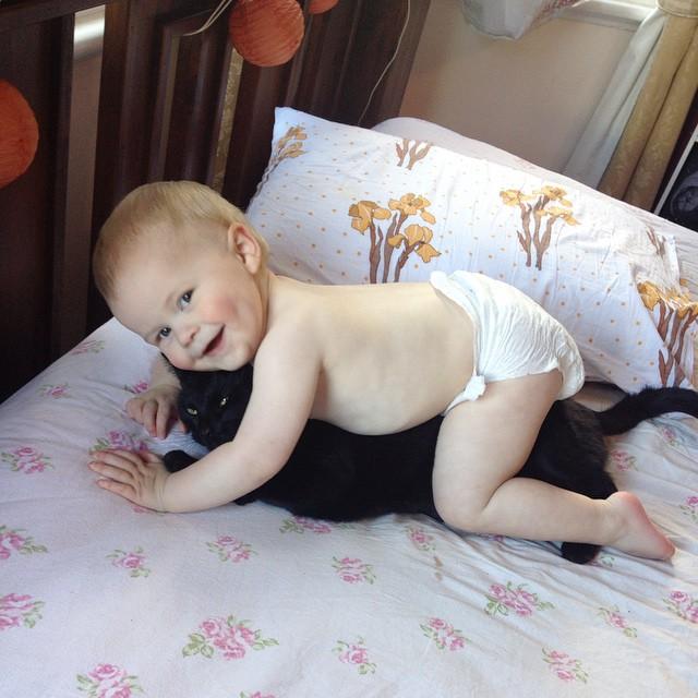 #atticuskitty #babyjagoe