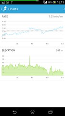 20141018_RunKeeper(Running)charts