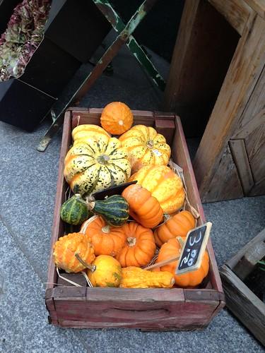 Halloween, calabazas en Centro. Madrid