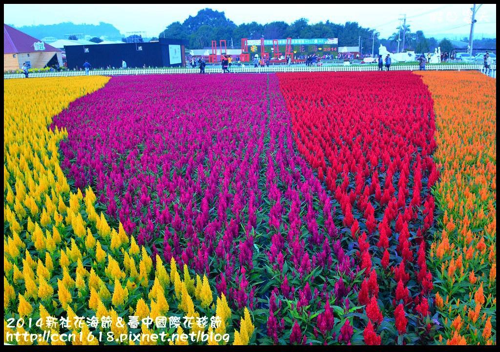 2014新社花海節&臺中國際花毯節DSC_4814