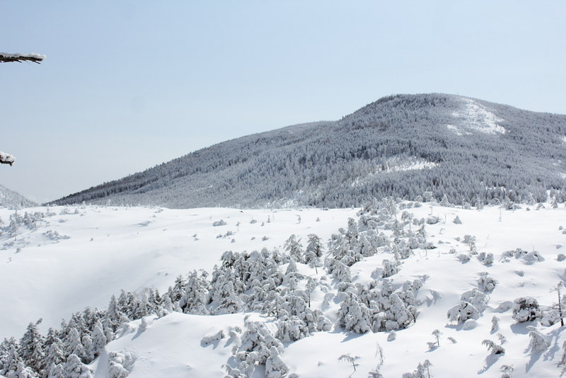 2014-03-09_00036_北横岳