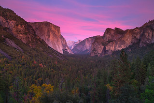 A splash of color from the tunnel view.