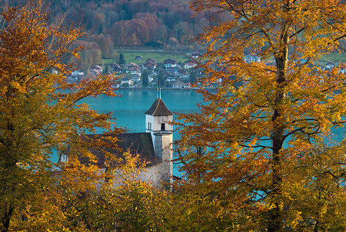 leica autumn sunset lake tree fall church vintage schweiz switzerland see branch sonnenuntergang dusk herbst kirche bern berne baum 1953 hektor manualfocuslens leitzwetzlarhektor125cmf25from1953