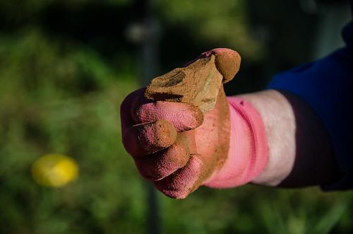 Pottersville Excavation-015
