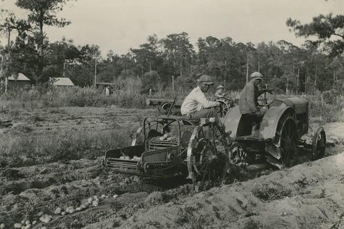 USDA photo archives.