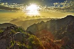 Madeira Island: Daybreak