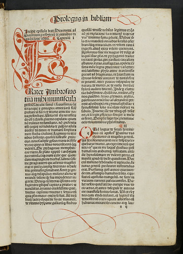 Calligraphic penwork initial in Biblia latina