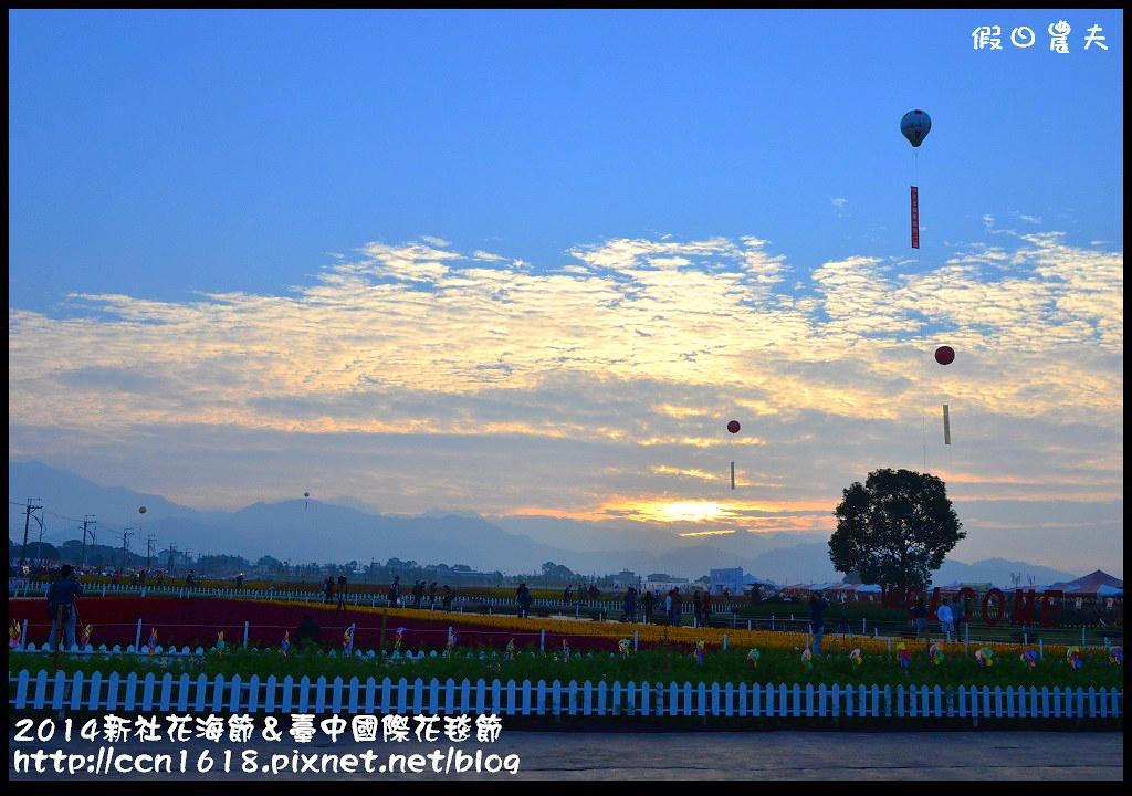 2014新社花海節&臺中國際花毯節DSC_4796
