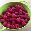 Just picked for raspberry cornmeal cake:) #whipcreaminourfuture