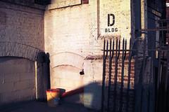 D BLDG - Gowanus
