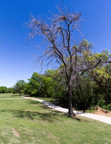 canon7d canoneos7d landscape lewisville texas