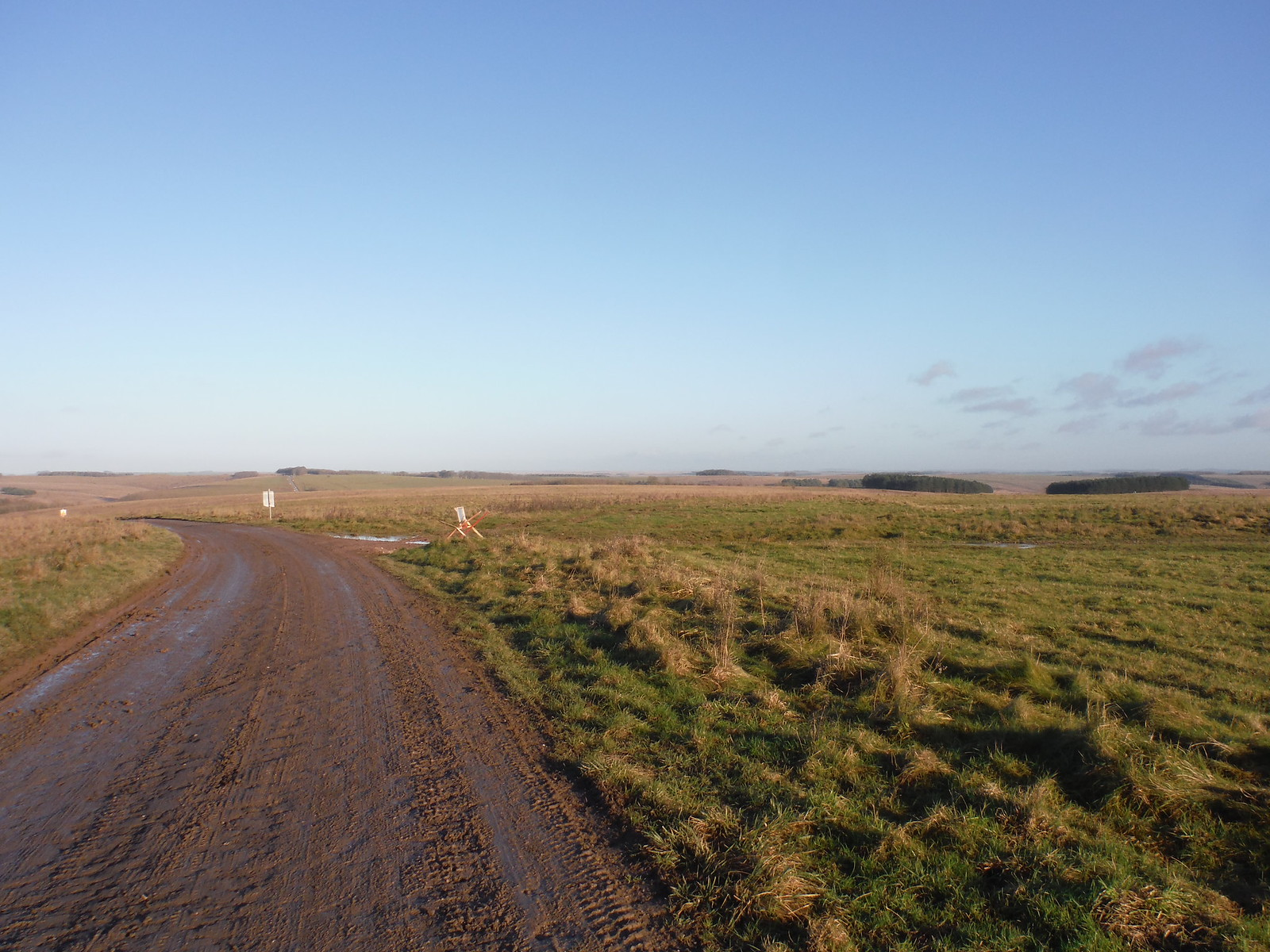 Long Backviews along American Road on Salisbury Plain SWC Walk 286 Westbury to Warminster (via Imber Range)