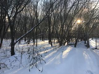 Sunny Winter in SAI