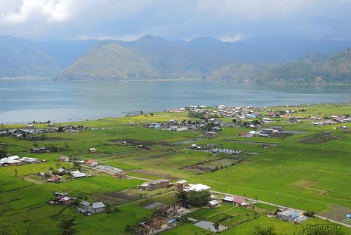 sumatra indonesia champs lac aceh rizières montagnes takengon danaulauttawar