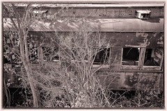 Abandoned railroad car (1)