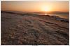 Salt Formations at Sunrise