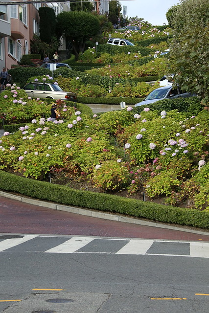 Lombard Street.  The world's most crooked street.  San Francisco, California.