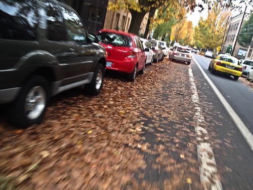 Leaves in bike lanes-2