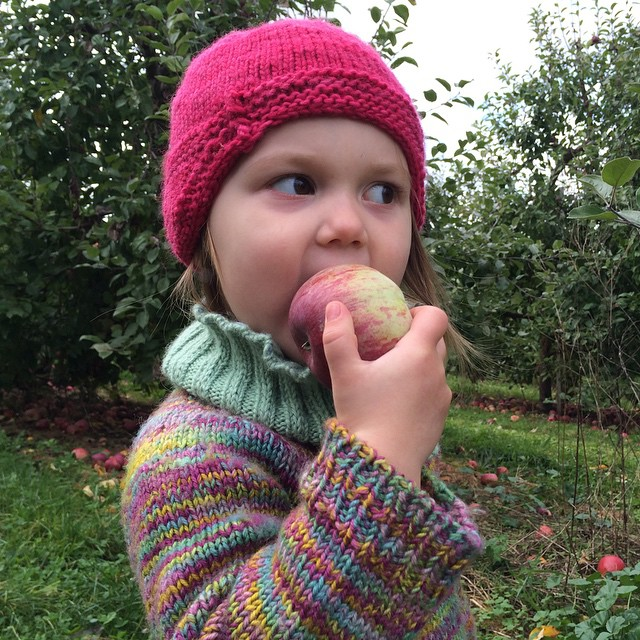 Sampling the goods during the MSR apple-picking trip!