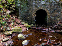 Tunnel Creek REL Park