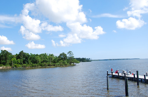 The Mulleks live and farm near the Gulf of Mexico, and helping protect water quality is a priority for them. NRCS photo.