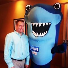 I am shorter than this shark. #bloggingcon