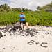 Beach near the Puako Petroglyph Trail by cherynf