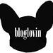 ikona bloglovin
