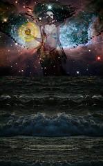 Never Adrift Alone