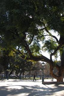 Views from Mendoza, Argentina