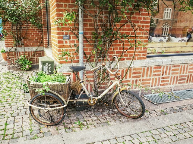 An old bike & garden in Copenhagen