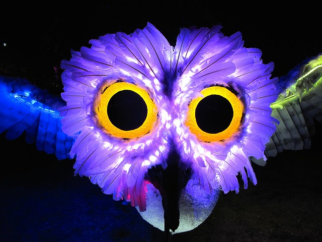 lighted owl sculpture bike