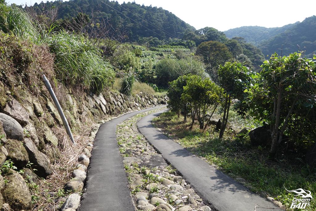 竹子湖青楓步道03