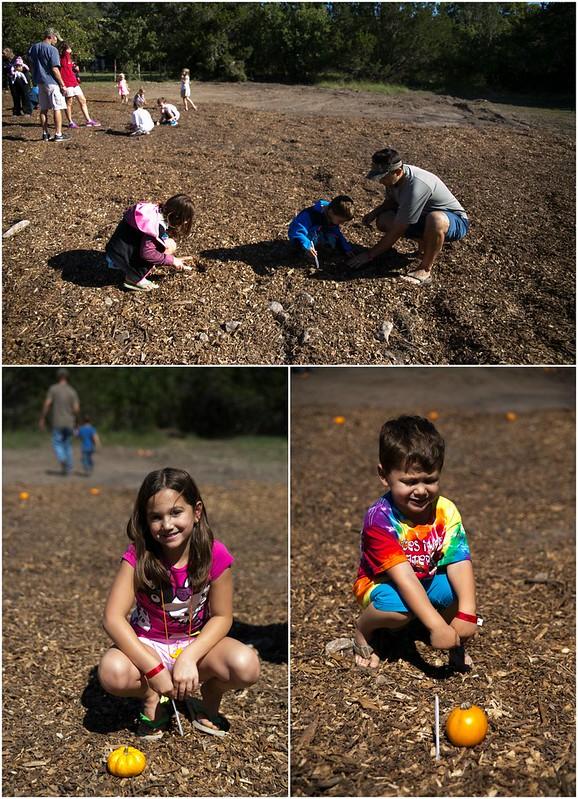 Planting Magic Pumpkin Seeds