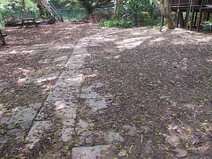這是兩年多前(2013.4.30)木屋區下方,還沒有手做水土保持生態工法,木屋下方水土流失嚴重的情形。