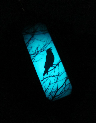 Glow Crow Medallion Necklace