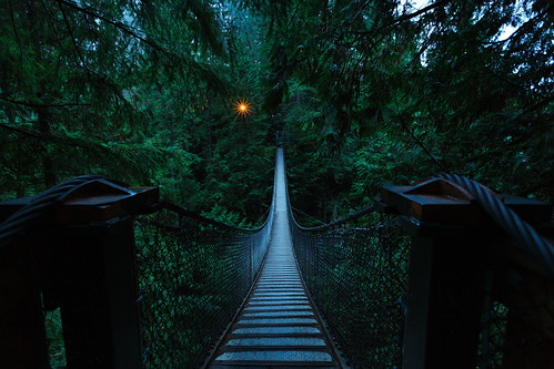 A Bridge To Light por Alan W