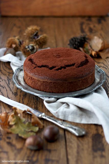 Torta morbida al cioccolato e farina di castagne5