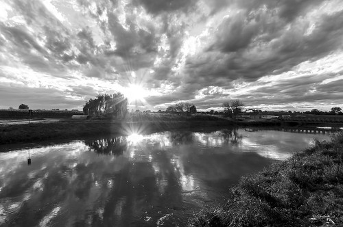 trees bw sun reflections river ghostbuster gigi49