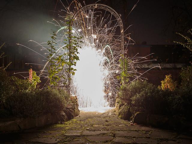 Firework (045 / 365)