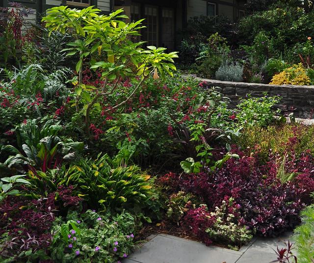 Scott Arboretum Entrance Garden (13)