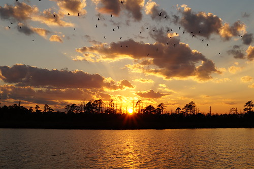 sunset usa birds creek nc northcarolina newbernnc cravencounty fairfieldharbour northwestcreek spectacularsunsetsandsunrises