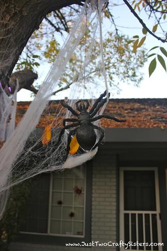 Spooky Halloween Spider