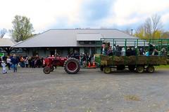 Hay Rides at Remsen Depot