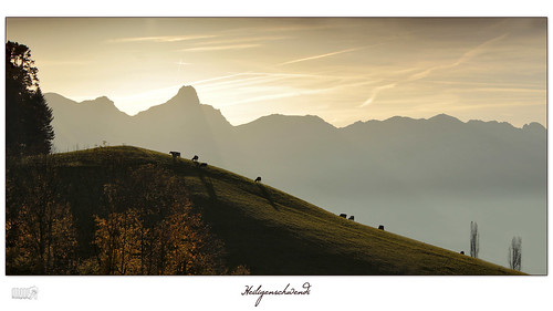travel autumn sky panorama mountains alps nature animals silhouette canon landscape schweiz switzerland cows ngc thun lonelyplanet agriculture nationalgeographic fantasticnature heiligenschwendi