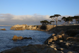Pacific Grove, Californian Coast.