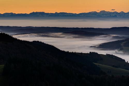 autumn black fog forest sunrise deutschland nebel herbst sonnenaufgang schwarzwald hdr badenwürttemberg herzogenhorn bernauimschwarzwald aufnahmearten